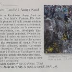 Arts Magazine (France)